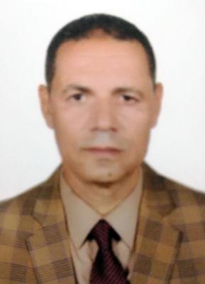 أحمد المصيلحي