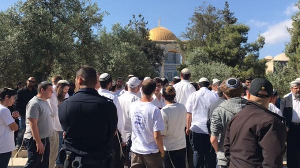اقتحام المستوطنين للمسجد الأقصى بحماية قوات الاحتلال