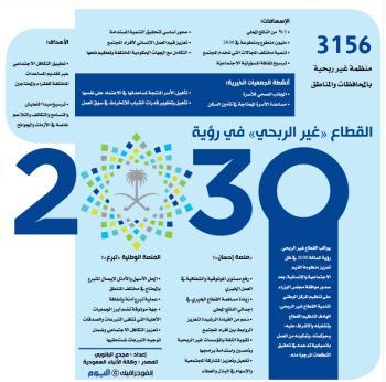 القطاع «غير الربحي» في رؤية 2030