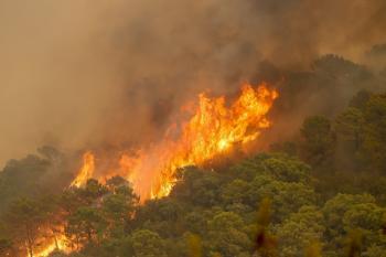 مصرع إطفائي في حريق الغابات جنوب إسبانيا