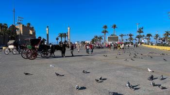 «إخوان ليبيا» تخطط لعرقلة قانون انتخاب الرئيس الجديد