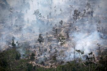 حرائق تلتهم  17.6 مليون هكتار من  الغابات في روسيا