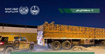الرياض.. ضبط مواطناً مخالفاً لنظام البيئة بحوزته 49 م3 من الحطب المحلي