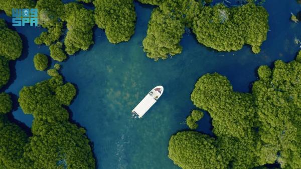 تسجيل محمية «جزر فرسان» في برنامج «الماب» لليونسكو
