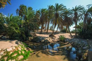 «وادي العيون».. ملتقى جمال الطبيعة وعبق التاريخ