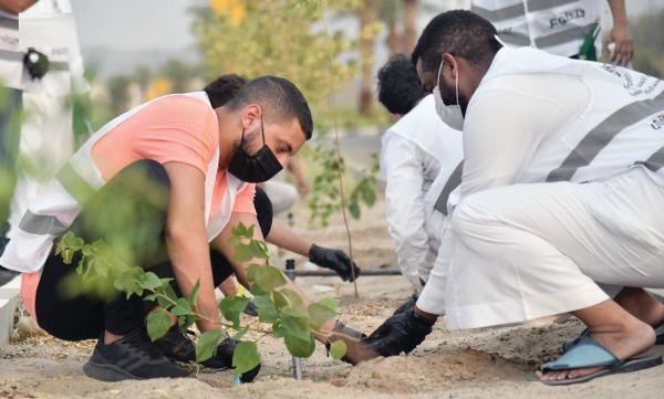 300 متطوع ومتطوعة.. بمبادرة «أم القرى الخضراء»