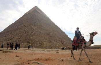 ارتفاع إصابات ووفيات كورونا الجديدة في مصر