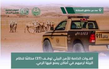 الأمن البيئي: ضبط 37 شخصاً لارتكابهم مخالفات رعي