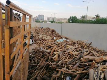 ضبط 3 مخالفين بحوزتهم حطب محلي معروض للبيع بجازان