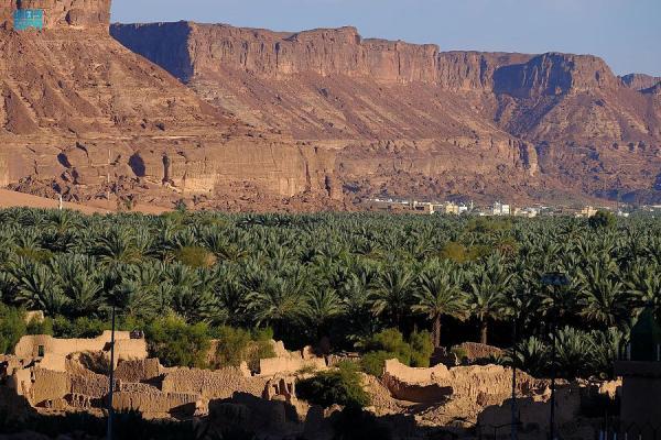 «صنع في السعودية» يدعم الصناعة الوطنية في «مهرجان العلا للتمور»