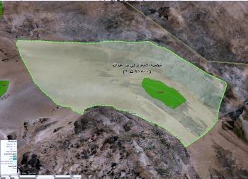 100 ألف شجرة جديدة بمحمية الإمام تركي بن عبدالله