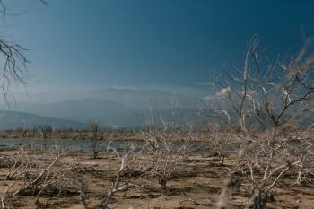 إعلان حالة الطوارىء في كاليفورنيا جراء الجفاف
