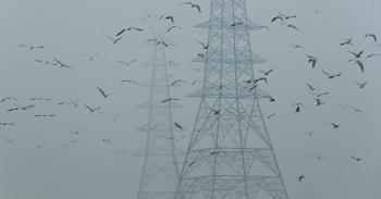الهند ترفض إعلان موعد لتحقيق صافي انبعاثات صفري