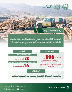 ضبط مخالفين في جدة بحوزتهما 590 م3 من الحطب والفحم